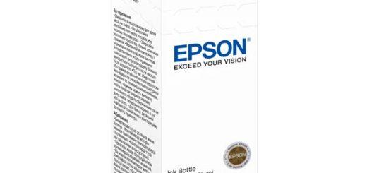 Epson C13T66434