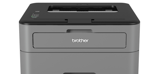 Toner Brother HL-L2300D