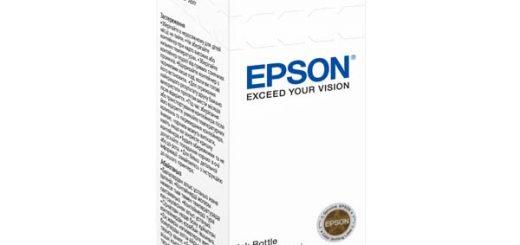 Epson C13T66424