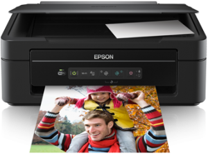 Náplně Epson Expression Home XP-205